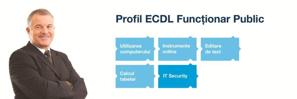 ECDL_2013_034_Profile_Banners_v03_FunctionarPublic.jpg